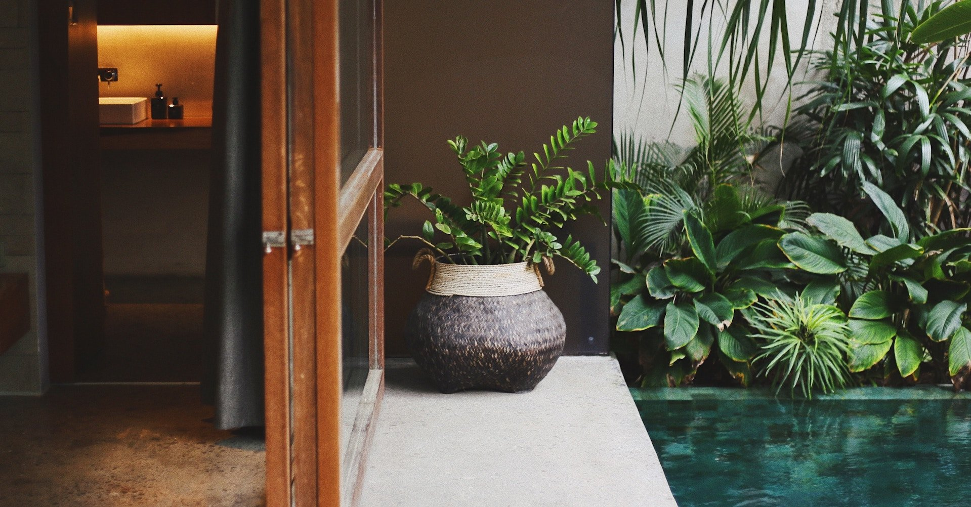 Grüne Pflanzen in einem Raum
