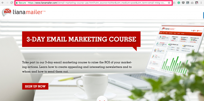 E-Mail-Marketing-Kurs Liana Technologies